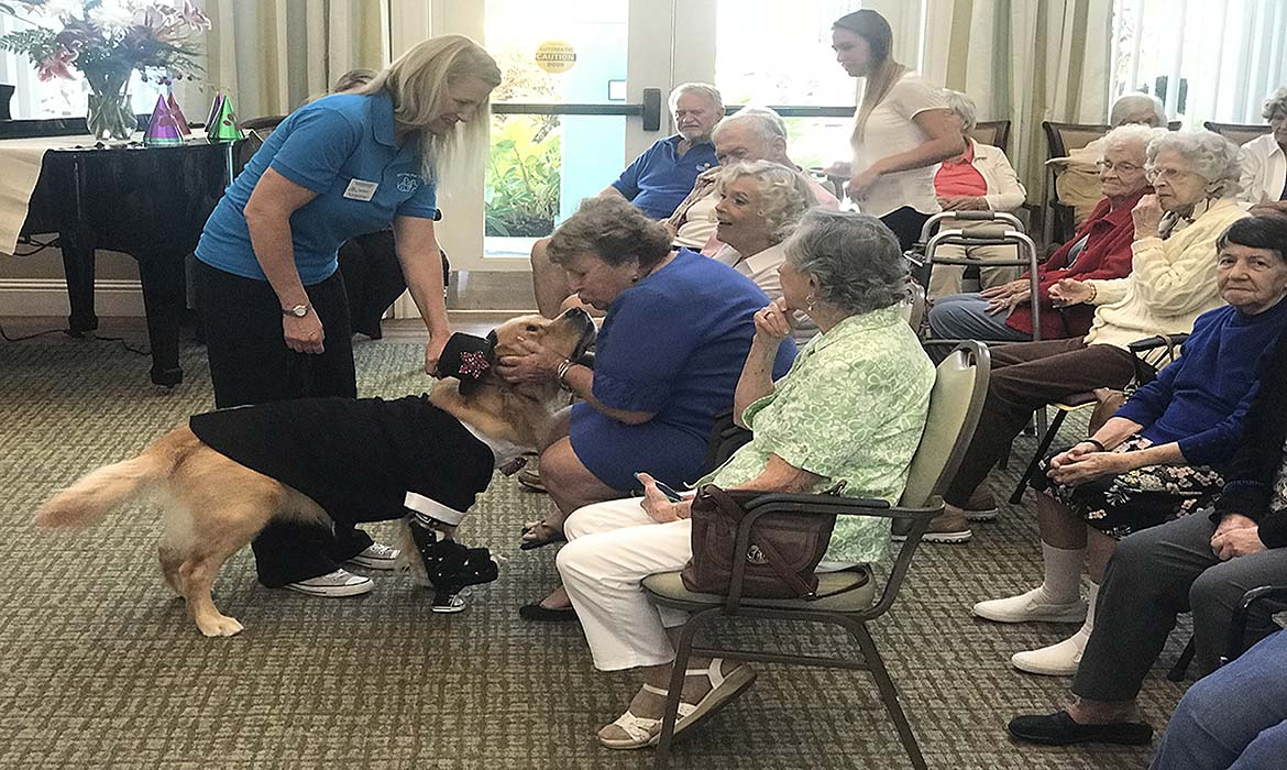 It was a Doggone Good Fashion Show at our Memory Cafe